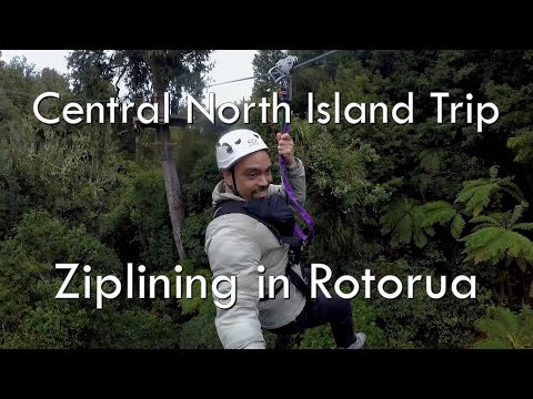 Awesome Ziplining Through the Trees at Rotorua Canopy Tours | New Zealand