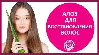 видео Домашняя маска для волос с алоэ