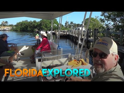 Free Boat Ride to Deerfield Island Park - Deerfield Beach, FL