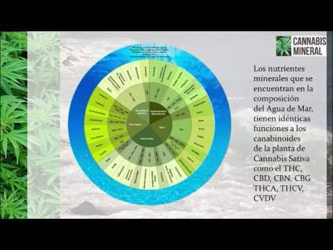 Cannabis Mineral - Solución fisiológica similar al aceite medicinal de la planta de Cannabis
