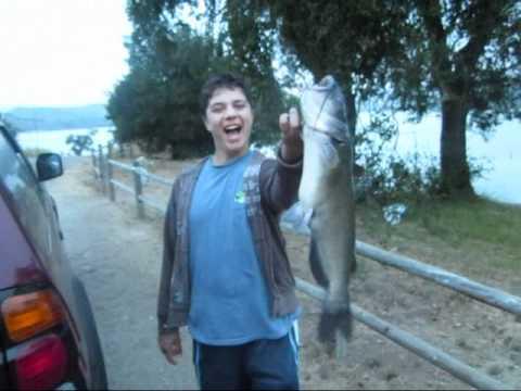 Cachuma lake catfish and bass fishing youtube for Lake cachuma fishing report