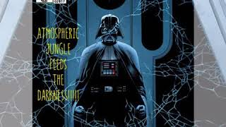 Gambar cover Darkside Revealed [free download]