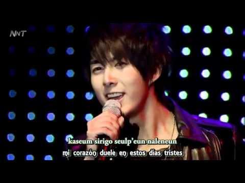 boys before flowers-Because I'm Stupid en vivo (live) subtitulado