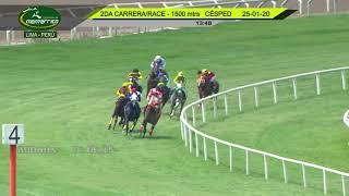 Vidéo de la course PMU PREMIO ALLOWANCE - COLTS