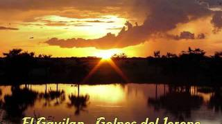 El Gavilan - Golpes del Joropo