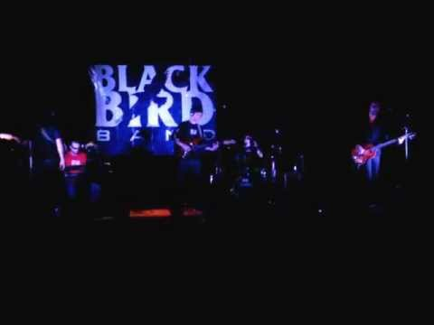 Let It Be - Black Bird Band