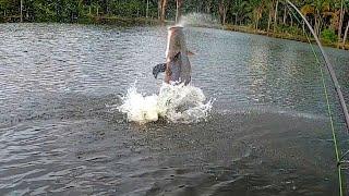 VOCÊ JÁ ACHOU QUE SEU CORAÇÃO FOSSE SAIR PELA BOCA??? Pescaria.
