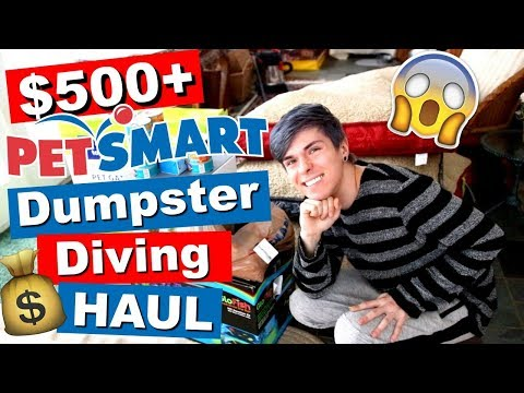 HUGE PETSMART DUMPSTER DIVING HAUL! *OVER $500*