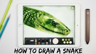 How to draw a Snake on Ipad with: Paper by 53