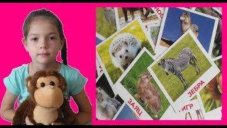 Мира и урок дикие животные. Влог / Lessons about wild animals. Mira and Maxim