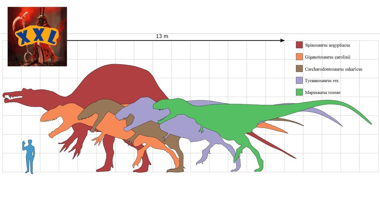 die 10 grössten theropoden ever  youtube