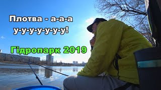 Хід плотви 2019. Риболовна розвідка в нетрях Гідропарка!
