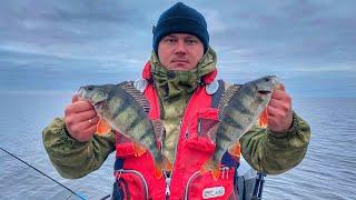 Осенняя рыбалка на окуня Ловля окуня на джиг
