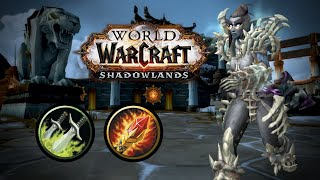 THIS GAME WAS INTENSE😲😲 | Shadowlands Arena WoW