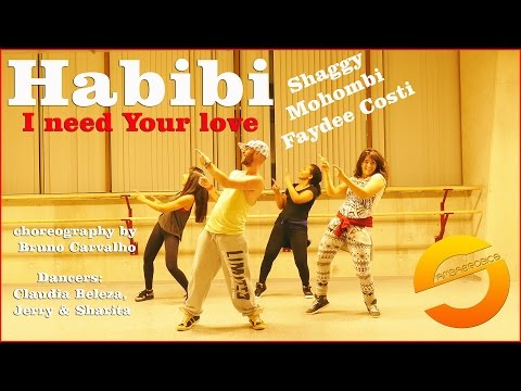 Habibi (I need Your love) - Shaggy Mohombi Faydee Costi