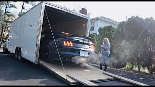 My New Shelby GT350R Delivery | Auto Fanatic