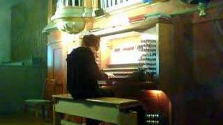 Wedding March . Swedish Organ