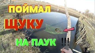 Рыбалка на ПАУК (ПОДЪЁМНИК, ХАПУГУ) в СОБСТВЕННОМ ПРУДУ !!!