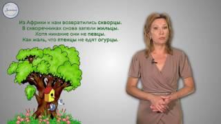 Русский язык 2 класс. Написание Ы после Ц в окончаниях слов названий предметов