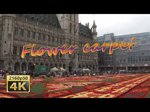 The Flower Carpet Brussels 2014, Construction  - Belgium 4K Travel Channel