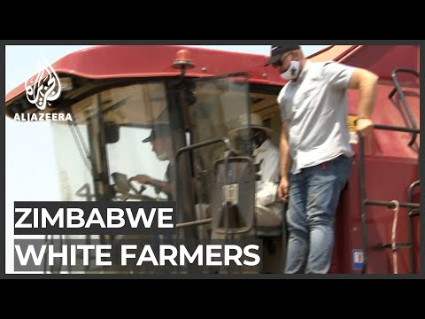 Zimbabwe: Return of white farmers may boost food production