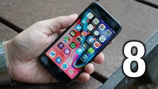 "Apple iPhone 8 Review: A great ""Plan B"""
