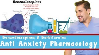 Benzodiazepines (-pam & -lam) vs. Barbituates (-Barbitol