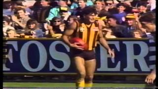 VFL 1989   Round 6   Hawthorn v Geelong x264