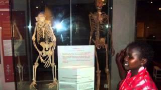 SLIDESHOW: Kenya National Museum