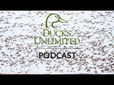 Bonus Episode – Missouri Department Of Conservation Mid-November Waterfowl Survey