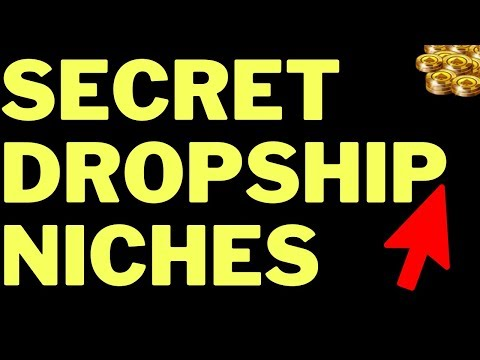 Dropshipping Niches 2019 (Top 8) Best Shopify Niches thumbnail