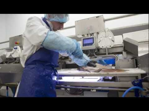 Customer Story: Marel Installation At Morrisons Fish Processing Plant In Grimsby, UK