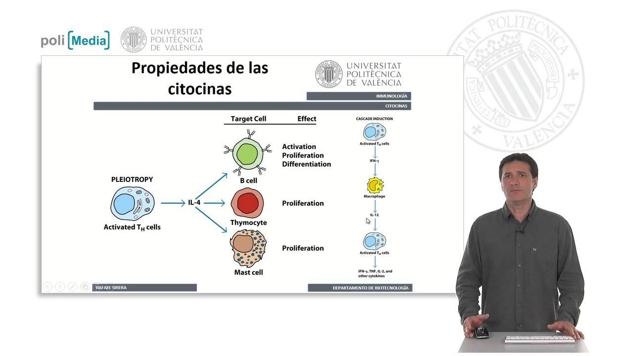 Citocinas Caracterisiticas 10 18 Upv Youtube