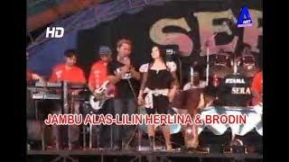 Jambu Alas-Lilin Herlina & Brodin Om Sera Lawas Campursari