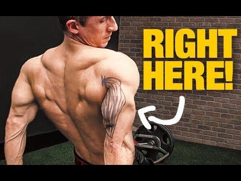 """Triceps Size """"Secret"""" (GET BIGGER ARMS!)"""