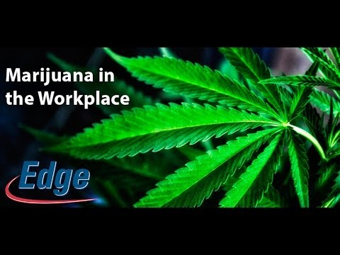 Marijuana in the Workplace and What Employers Can Do About It - Edge Information Management