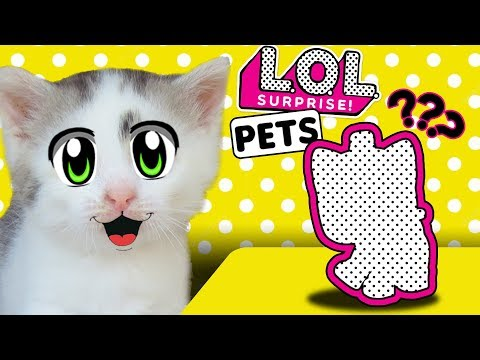 LOL GIRLFRIEND? THE CAT KID DIDN'T UNDERSTAND! CAT MURKA AND A NEW DOLL LOL! LOL SURPRISE PETS from YouTube · Duration:  5 minutes 1 seconds