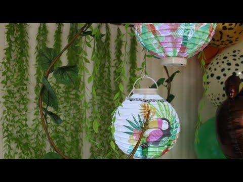 Safari Jungle theme birthday theme ideas | Jungle theme decorations