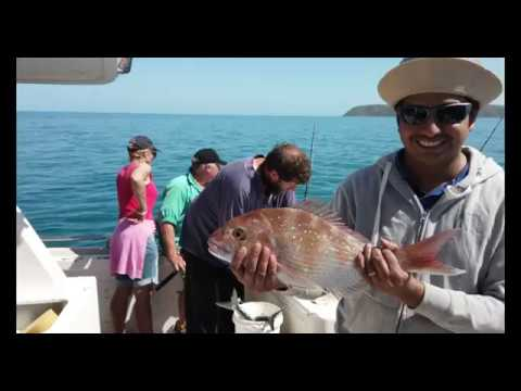A Day With Pete Lamb Fishing -(Fishing Charters)