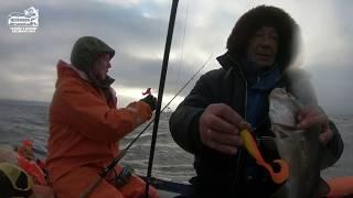 БОЛЬШОЙ УЛОВ VLOG Отличный клёв Повтор рыбалки треска Ноябрь 2019