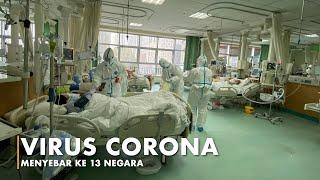 80 Orang di China Meninggal karena Virus Corona