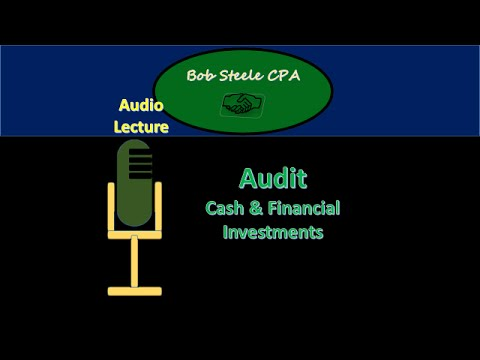 56605-Audit- Cash & Financial Investments