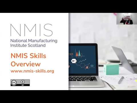 Overview of NMIS Skills