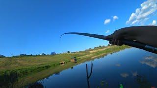 ДУМАЛ КРУПНЫЙ КАРП И САЗАН А ТУТ Рыбалка на поплавок 2021 Рыбалка на карася Летняя рыбалка