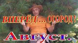 Огород в Августе. Сибирь благодатная. Урожайный сезон. Арбузы, дыня, груша, слива и....