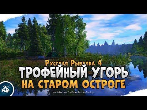 Где закрыть Угря на Старом Остроге? · Русская Рыбалка 4