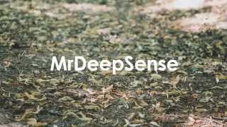 MrDeepSense Part I -compilation