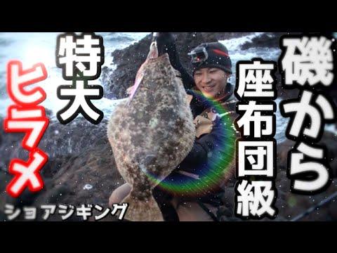 【驚愕】陸から超巨大ヒラメが釣れた!ライトショアジギング 【座布団ヒラメ】