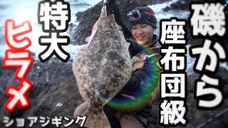 【驚愕】陸から超巨大ヒラメが釣れた!ライトショアジギング 【座布団ヒラメ】 thumbnail