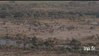 Botswana : village aux abords du marais